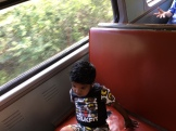 Sit & Enjoy rail ride