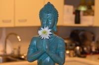 Buddha Kayil Poo